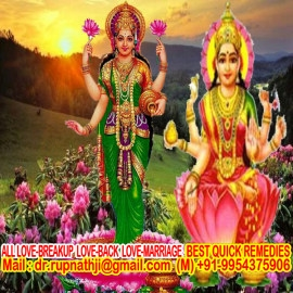 astrologer of india
