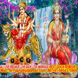 fast solution call divine miraculous bagalamukhi dashamahavidya sadhak rupnathji