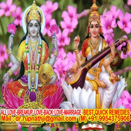 powerful boy vashikaran call divine miraculous bagalamukhi dashamahavidya sadhak rupnathji