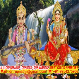 relationship solution call divine miraculous bagalamukhi dashamahavidya sadhak rupnathji